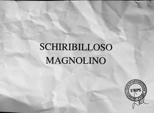 """Sabrina D'Alessandro, """"SCHIRIBILLOSO MAGNOLINO"""", video 2015, URPS, Ufficio Resurrezione Parole Smarrite, Divisione Mutoparlante, SkyArte 2016"""